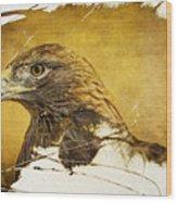 Golden Eagle Grunge Portrait Wood Print