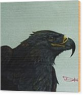 Golden Eagle- Head Study Wood Print