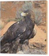 Golden Eagle On Rabbit Wood Print