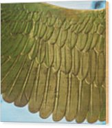 Golden Eagle Wing Wood Print