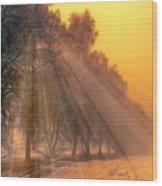Golden Early Morning Sun Rays On The Farm Chesterhurst L B Wood Print