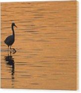 Golden Egret Wood Print