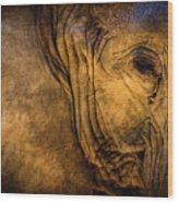 Golden Elephant Wood Print