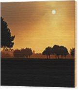 Golden Evening Light Wood Print
