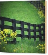 Golden Fence Wood Print