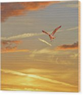 Golden Flight Wood Print