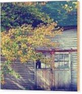 Golden Fall Foliage  Wood Print