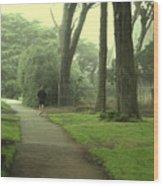 Golden Gate Park 06 Wood Print