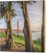 The Trees Of The Golden Gate Wood Print