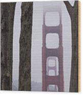 Golden Gate Through The Trees Wood Print