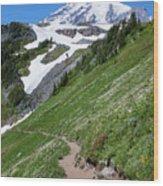 Golden Gate Trail Wood Print