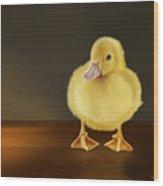 Golden Glow Wood Print by Bob Nolin