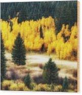 Golden Glow Wood Print