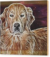 Golden Glowing Retriever Wood Print