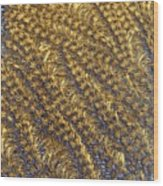 Golden Grains - Hoarfrost On A Solar Panel Wood Print