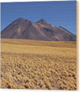 Golden Grasslands And Miniques Volcano Chile Wood Print