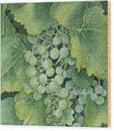 Golden Green Grapes Wood Print
