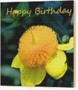 Golden Guinea Happy Birthday Wood Print