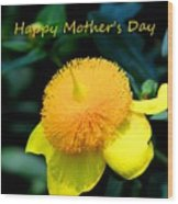 Golden Guinea Happy Mothers Day Wood Print