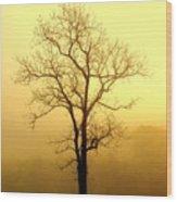 Golden Haze Wood Print