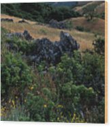 Golden Hills Of Summer Wood Print by Kathy Yates