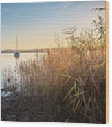 Golden Hour At The Lake Wood Print