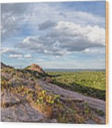 Golden Hour Light On Turkey Peak And Prickly Pear Cacti - Enchanted Rock Fredericksburg Hill Country Wood Print