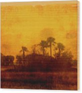 Golden Land Wood Print