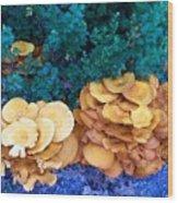 Golden Layer Wood Print