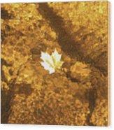 Golden Leaf In Water Wood Print
