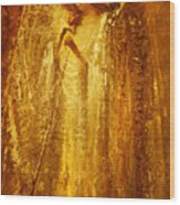 Golden Light Of Angel Wood Print