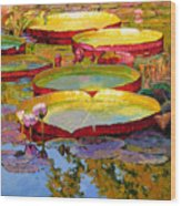 Golden Light on Pond Wood Print