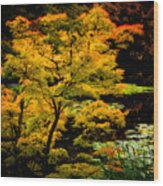 Golden Maple Wood Print