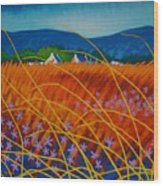 Golden Meadow Wood Print