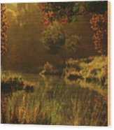 Golden Wood Print by Melissa Krauss
