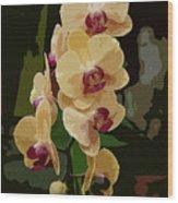Golden Moth Orchid Wood Print