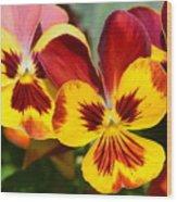 Golden Pansies Wood Print