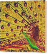 Golden Peacock Wood Print
