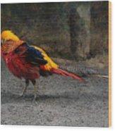 Golden Pheasant Wood Print