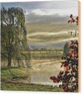 Golden Pond Wood Print