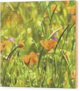 Golden Poppies In A Gentle Breeze  Wood Print