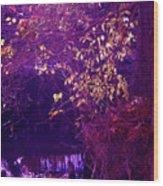 Golden Purples Wood Print