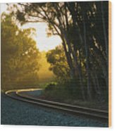 Golden Rails  9559l Wood Print