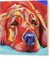 Golden Retriever - Ranger Wood Print by Alicia VanNoy Call