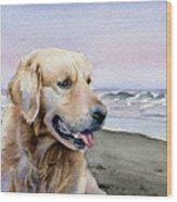 Golden Retriever At The Beach Wood Print