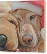 Golden Retriever Dog Santa Hat And Friend Wood Print