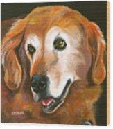 Golden Retriever Fur Child Wood Print by Susan A Becker