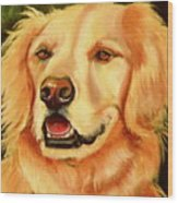 Golden Retriever Sweet As Sugar Wood Print by Susan A Becker