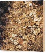 Golden Gravel Wood Print