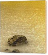 Golden Silence Wood Print